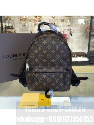 Louis Vuitton Palm Springs Backpack PM Monogram Canvas Leather Cruise 2016 Collection, Noir M41560