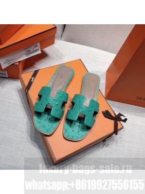 Hermes Oran Flat slippers with Ostrich Leather 084 2021 Collection