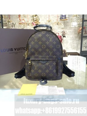Louis Vuitton Palm Springs Backpack PM Monogram Cruise 2016 Collection, Noir M41560