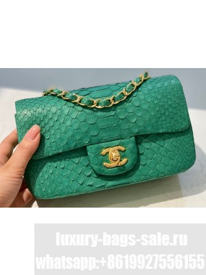 Chanel Python Classic Flap Small Bag A1116 15