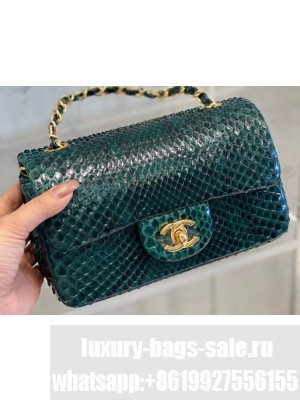 Chanel Python Classic Flap Small Bag A1116 07